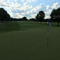 OrchardLakeCC11-Greenback