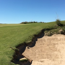 ballyneal4-shortright