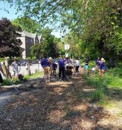 canalshores12-nativevolunteers_060316