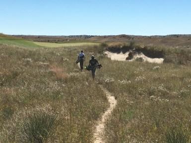 sandhills3-path