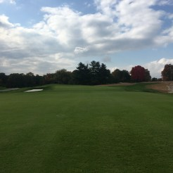 meadowbrook12-short