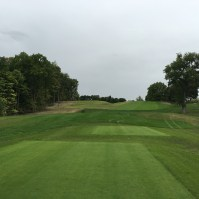 meadowbrook14-tee