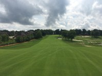 meadowbrook2-fairway