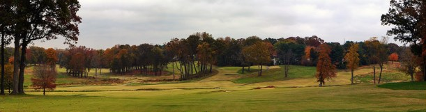 OldTown4-Fairway.jpg