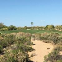 DesertForest13-TeeZoom