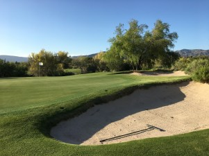 DesertForest17-BackRight