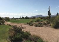 DesertForest7-Approach