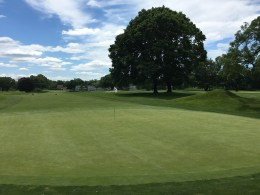 #11 - Par 4 - Green back to the fairway