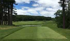 #9 - Par 4 - From the back right tee