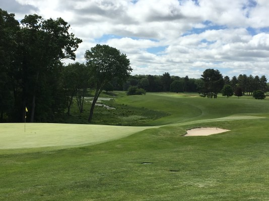 #9 - Par 4 - The green back to the bold fairway
