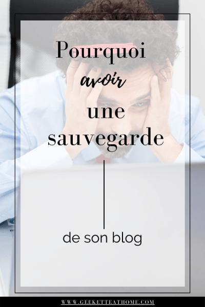 pourquoi avoir une sauvegarde de son blog