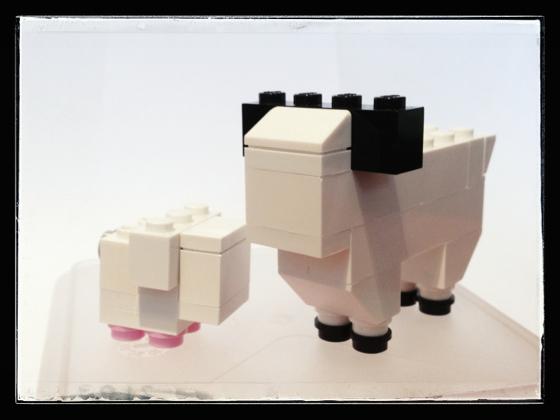Sheep and Lamb, front view.
