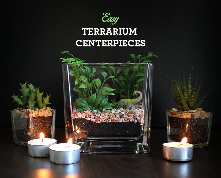 DIY Terrarium Centerpieces
