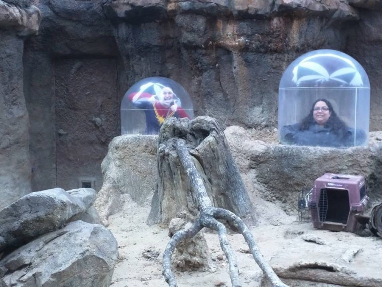 Jackie and Courtney had to fight tiny children for their turn to pop up in these capsules.