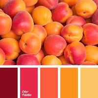 Colour Palette - Autumn Shades