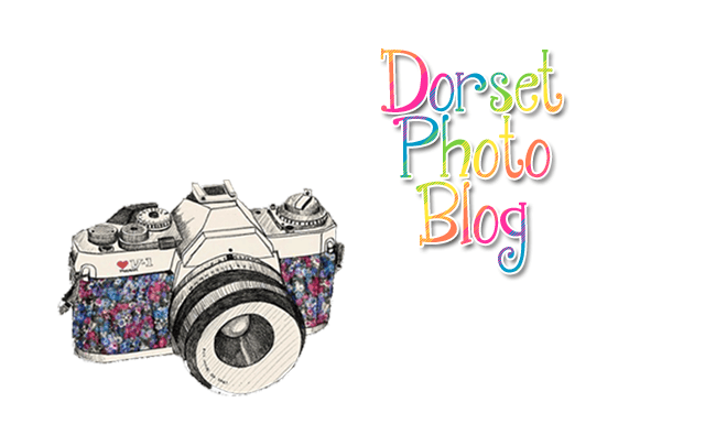 Dorset Holiday Photo Blog