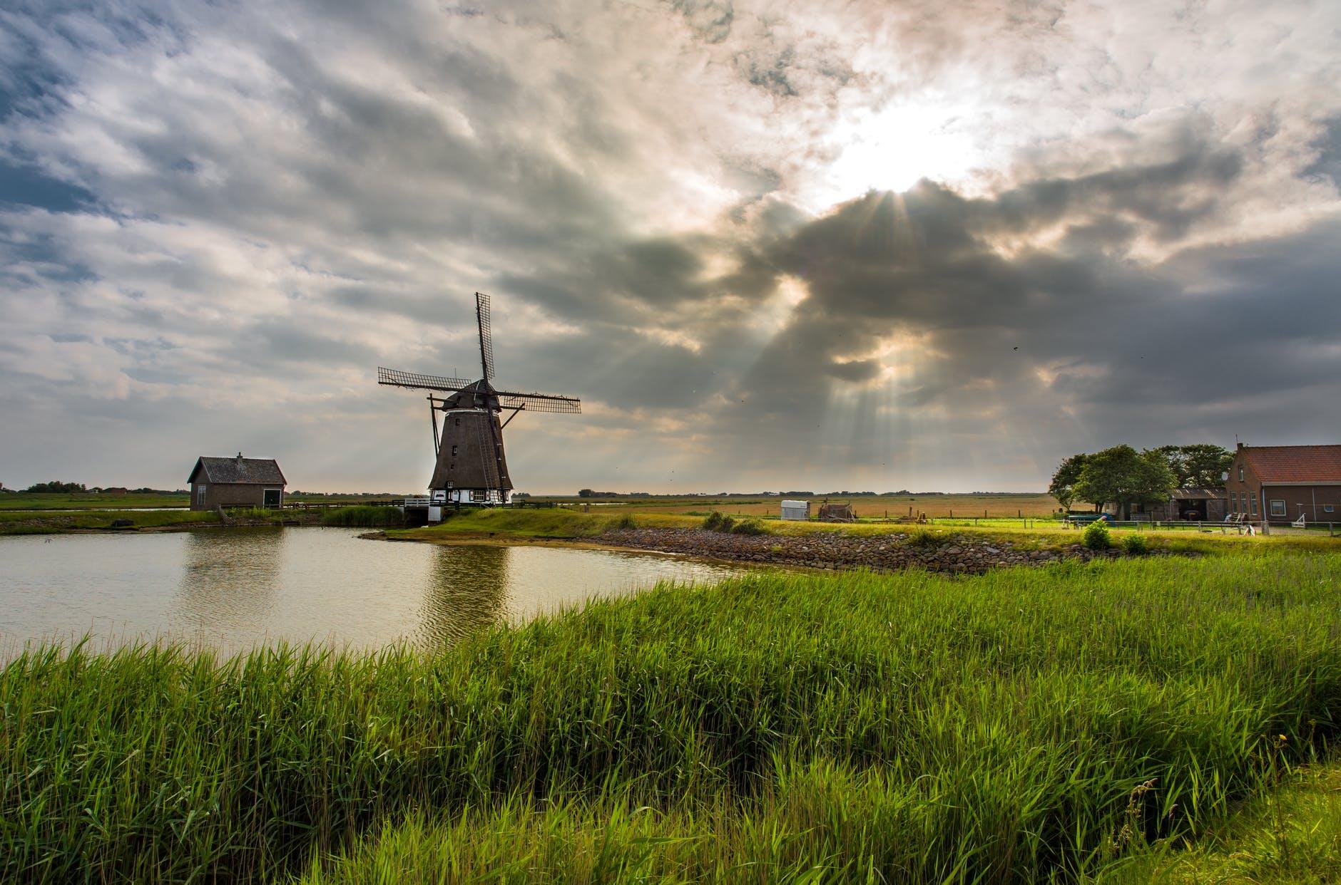 windmills and grass
