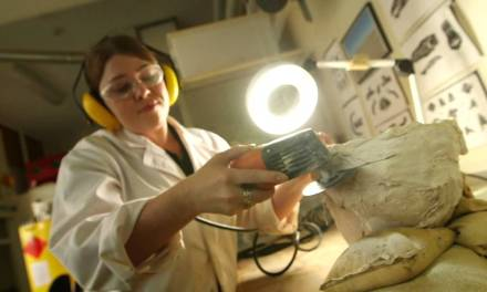 Girls Dig Dinosaurs: Why Women are the Future of Palaeontology