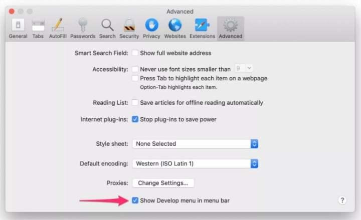 safari develop options.jpg