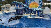 Blue Horizons Image: Dakster Sullivan