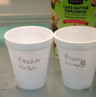 The cups in the freezer were in good company.