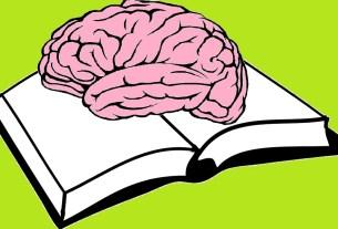clip art of a brain on a book