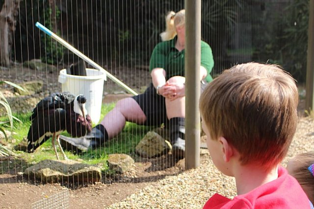 A Keeper Chats with Visitors at London Zoo, Image: Sophie Brown