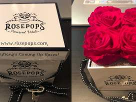RosePops