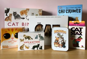 7 Cat-Themed Games, Image Sophie Brown