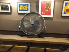 Another big fan showed up