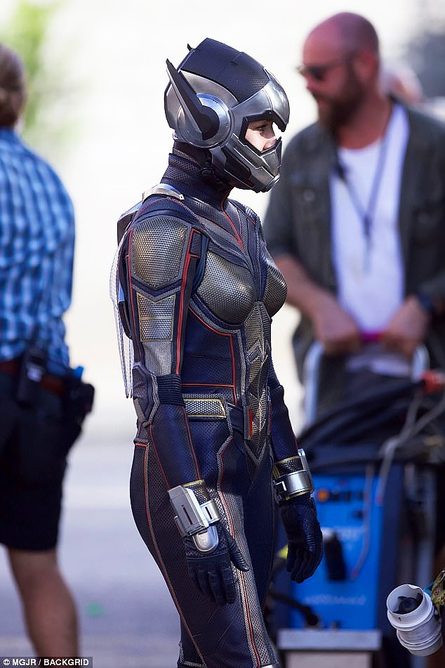 Wasp-set photo 1