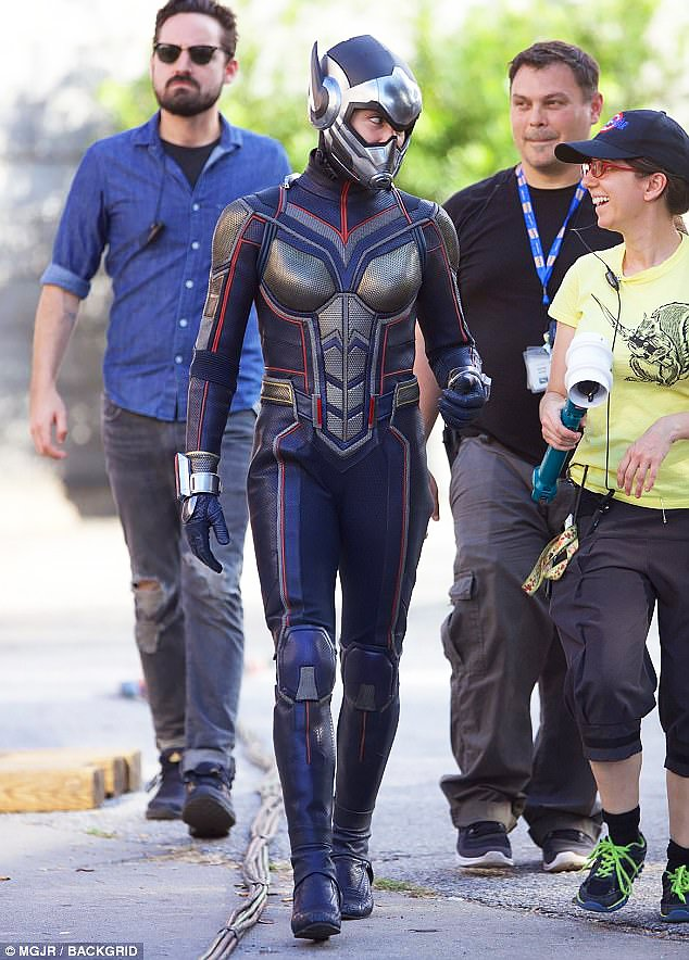 Wasp-set photo 2