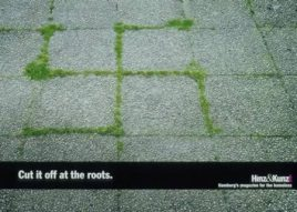 anti-racist-cut-roots