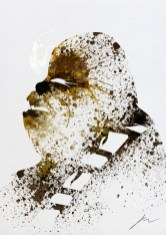 Arian-noveir-chewbacca