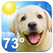 Dos apps móviles del clima que les gustarán tanto a los amantes de los perros, como de los gatos