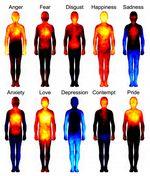 Estudio muestra en que partes del cuerpo humano impactan las distintas emociones