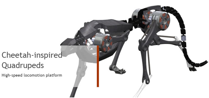 robot-chita