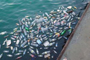 Desechos Plásticos - Enzima Mutante