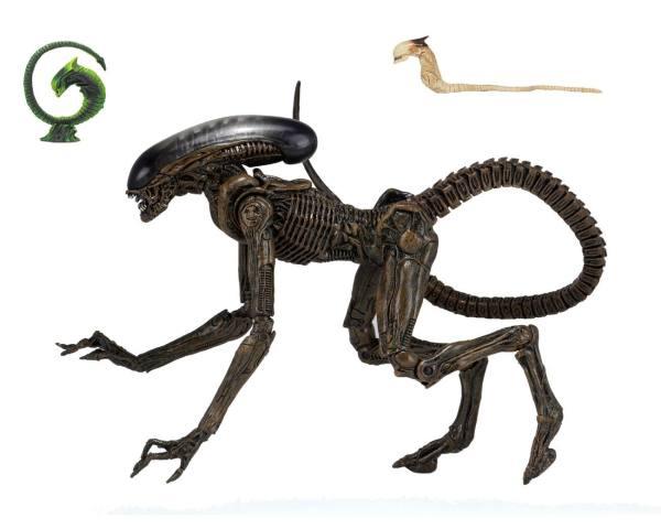 Alien 3 akciófigura - Ultimate Dog Alien 23 cm