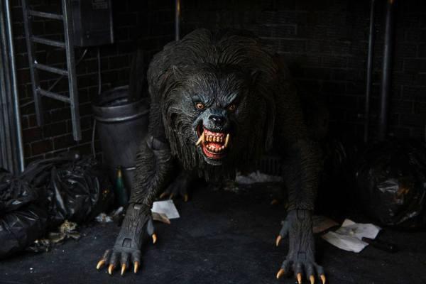 An American Werewolf In London Action Figure Ultimate Kessler Werewolf 18 cm_neca04951