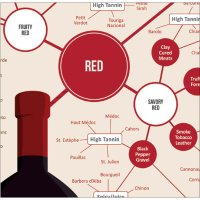 Fabulous Different Types of Wine Infographic