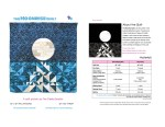 Moonrise quilt pattern by geeky bobbin