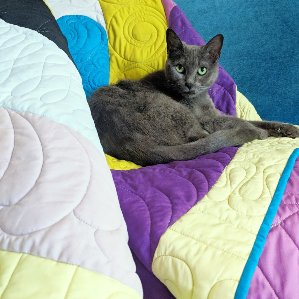 Orbital quilt by geeky bobbin with matching cat