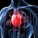 Heart Disease? Explaining the ML Model | Part 2