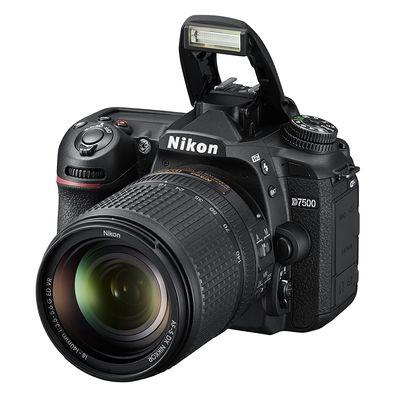 Best Low Light Cameras of 2021 4