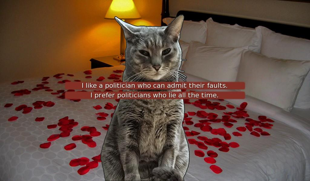 Make Choices to Help Your Cat Become the next President or Fall in Love