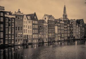 blog nederland, damp