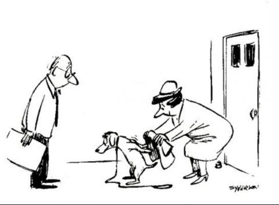 Syerson Cartoon