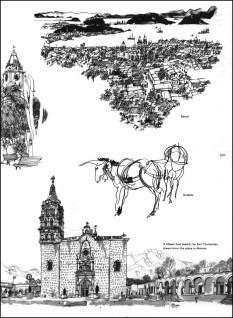 Sketches Baum. Shields & Thollander