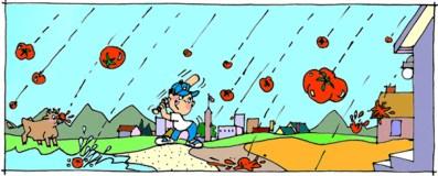 Raining Tomatoes